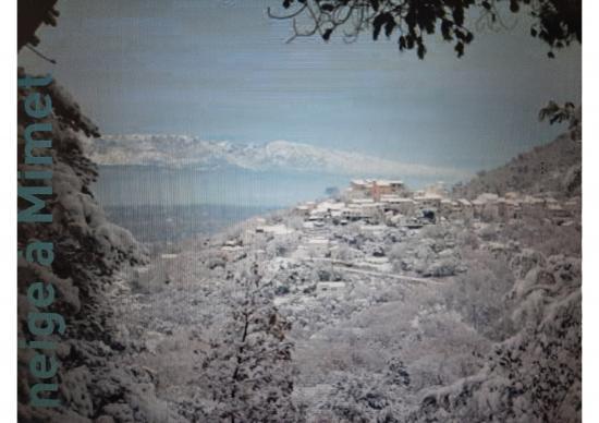 Mimet sous la neige